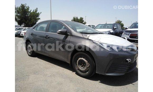 Acheter Importé Voiture Toyota Corolla Autre à Import - Dubai, Diana