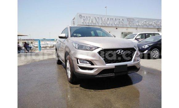 Acheter Importé Voiture Hyundai Tucson Autre à Import - Dubai, Diana