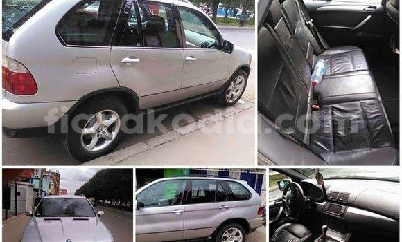 Acheter Occasion Voiture BMW X5 Gris à Antananarivo au Analamanga
