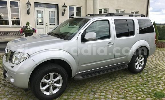 Acheter Occasion Voiture Nissan Pathfinder Gris à Antananarivo au Analamanga