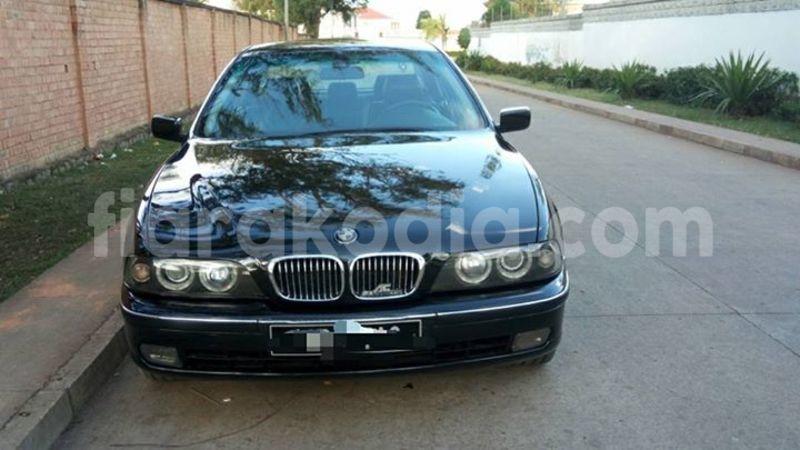Big with watermark 18952779 709237862582138 3608237861038673941 n