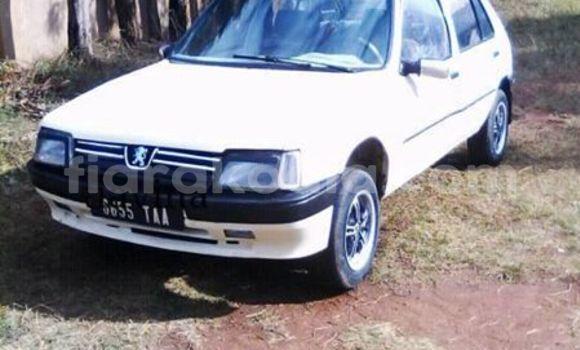 Acheter Occasion Voiture Peugeot 205 Blanc à Antananarivo, Analamanga