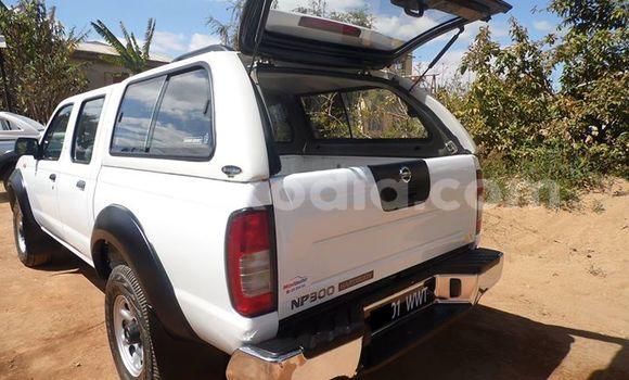 Acheter Occasion Voiture Nissan Navara Blanc à Antananarivo au Analamanga