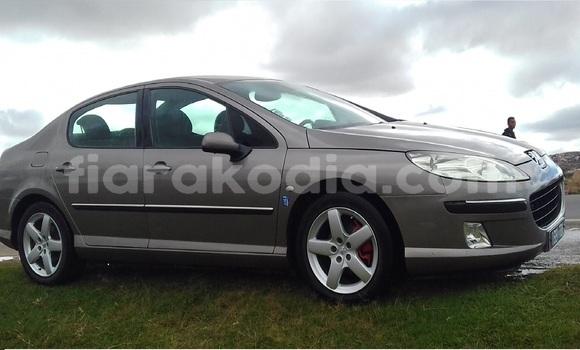 Acheter Occasion Voiture Peugeot 407 Marron à Antananarivo au Analamanga
