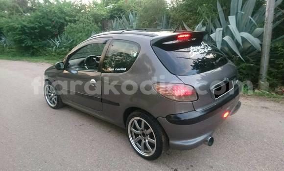 Acheter Occasion Voiture Peugeot 206 Autre à Ambatolampy au Vakinankaratra