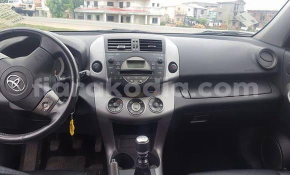 Acheter Occasion Voiture Toyota RAV4 Autre à Ambatolampy, Vakinankaratra