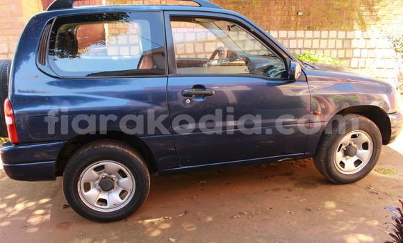 Acheter Occasion Voiture Suzuki Vitara Bleu à Antananarivo au Analamanga