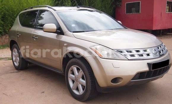Acheter Occasion Voiture Nissan Murano Marron à Antananarivo, Analamanga