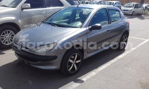 Acheter Occasions Voiture Peugeot 206 Beige à Antananarivo, Analamanga