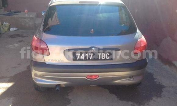 Acheter Occasion Voiture Peugeot 206 Autre à Antananarivo, Analamanga