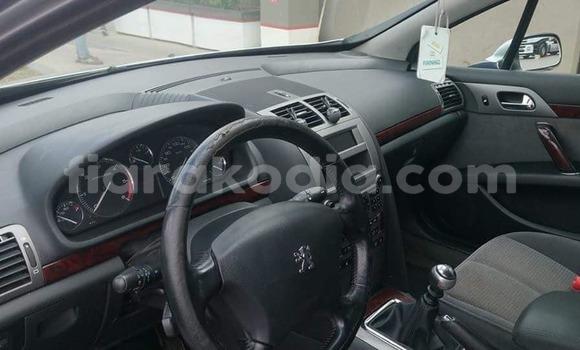 Acheter Occasions Voiture Peugeot 407 Gris à Antananarivo au Analamanga