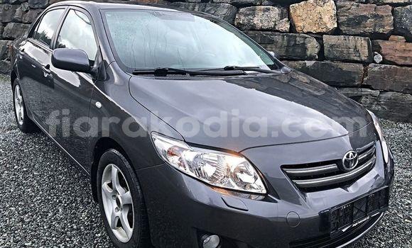 Acheter Occasion Voiture Toyota Corolla Bleu à Antananarivo, Analamanga