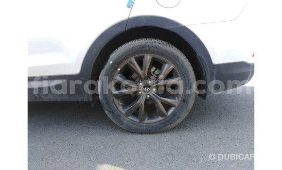 Acheter Importé Voiture Hyundai Santa Fe Blanc à Import - Dubai, Diana