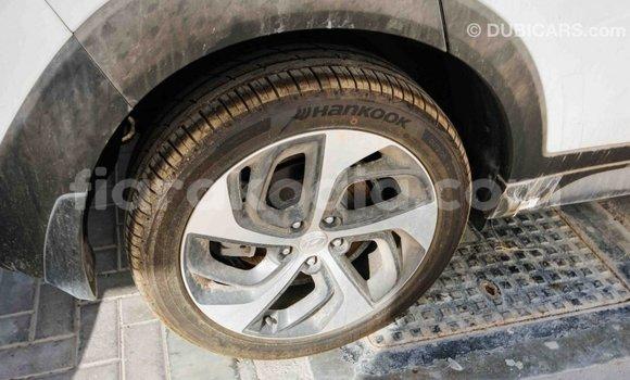 Acheter Importé Voiture Hyundai Tucson Blanc à Import - Dubai, Diana