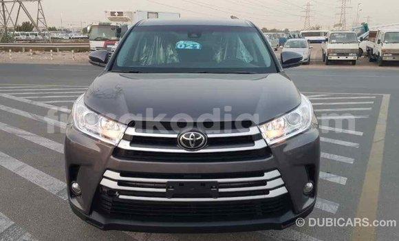 Acheter Importé Voiture Toyota Highlander Autre à Import - Dubai, Diana