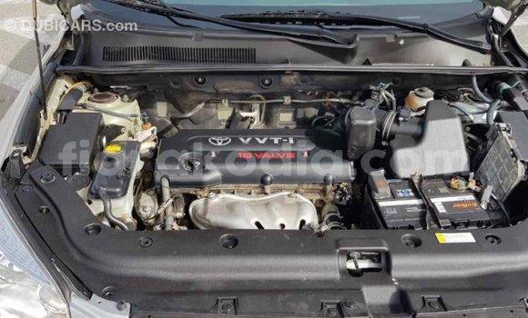 Acheter Importé Voiture Toyota RAV 4 Autre à Import - Dubai, Diana